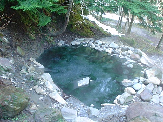Olympic Hot Springs Washington Hot Springs